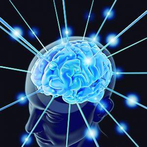 Vias de acesso ao cérebro – Dr. Lair Ribeiro