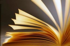 Aulas de português para estrangeiros: Literatura ganha vida