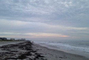 Frente fria pode trazer geada para Palm Beach esta semana