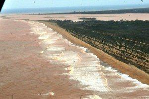 No mar, lama deve matar diversas espécies