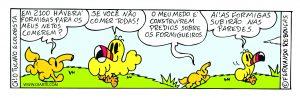 121_oi_formigueiro_300dcor