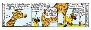 Oi! O Tucano Ecologista: Girafa