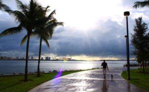 """Flórida bate recorde de temperatura mínima """"alta"""""""