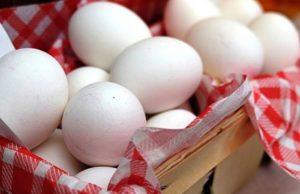 Ovos contaminados afetam 15 países europeus, Suíça e Hong Kong