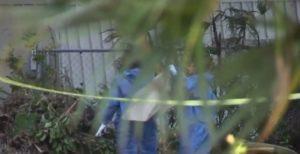 Corpo é encontrado em barco em Coconut Grove