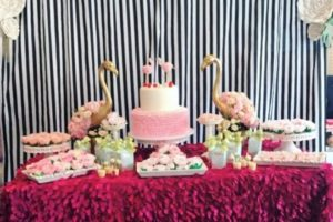 Dica On The Budget:  Twins baby shower