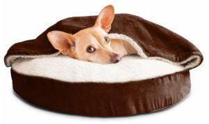 Produtos Bacanas Encontrados Por Aí Para Seu Pet Descansar