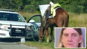 Mulher é multada e recebe DUI por estar bêbada sobre um cavalo na FL