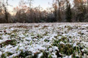 Flórida vê neve e temperatura continua baixa em todo estado