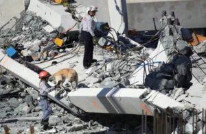 Brasileira que atua no Florida Task Force conta sobre o resgate após queda da passarela em Miami
