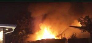 Idosa fica gravemente ferida e gatos morrem em incêndio em Deerfield Beach