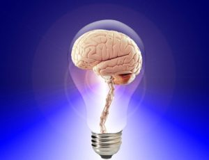 Exercitando o cérebro: Aumente a sua inteligência