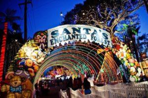 Agenda: Final de ano cheio de atrações