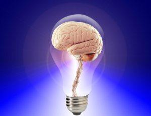 Não existe procedimento  de rejuvenescimento para  o cérebro: cuide dele!