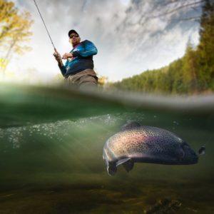 Saiba quais as datas da temporada de pesca sem licença em 2019 na FL