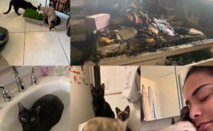 Apartamento de moradoras brasileiras pega fogo em Boca Raton