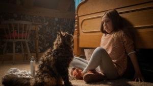 """Co-Diretores do """"Pet Sematary"""" contam como foi trazer essa nova adaptação para as telas grandes – EXCLUSIVO"""