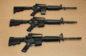 Defensores querem que Suprema Corte da FL bloqueie posse de armas de assalto