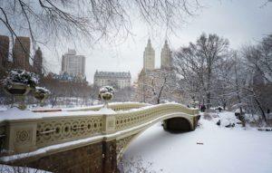 Inverno deve ser mais rigoroso esse ano nos Estados Unidos