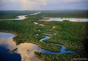 Governo compra terras no Everglades para impedir perfuração de petróleo