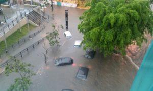 São Paulo recebe maior volume de chuva em 24 horas e rios transbordam